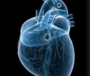 A-to-Z Guide to Heart Tests - SCAI
